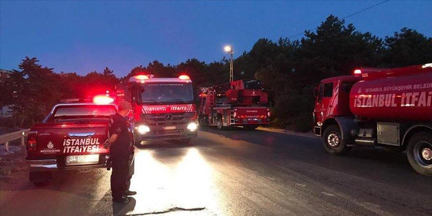 İstanbul'daki orman yangın söndürüldü