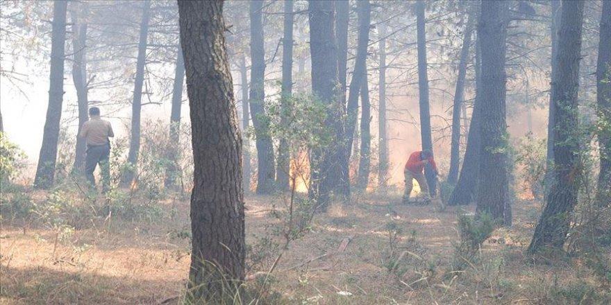 İstanbul'da Aydos Ormanı'ndaki yangın söndürüldü