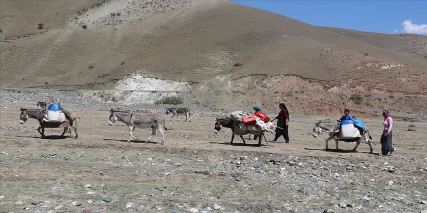 Göçer kadınların eşek sırtında zorlu 'süt' yolculuğu