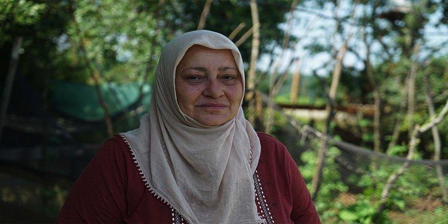 Karadeniz özlemini İstanbul'daki bahçesinde gideriyor