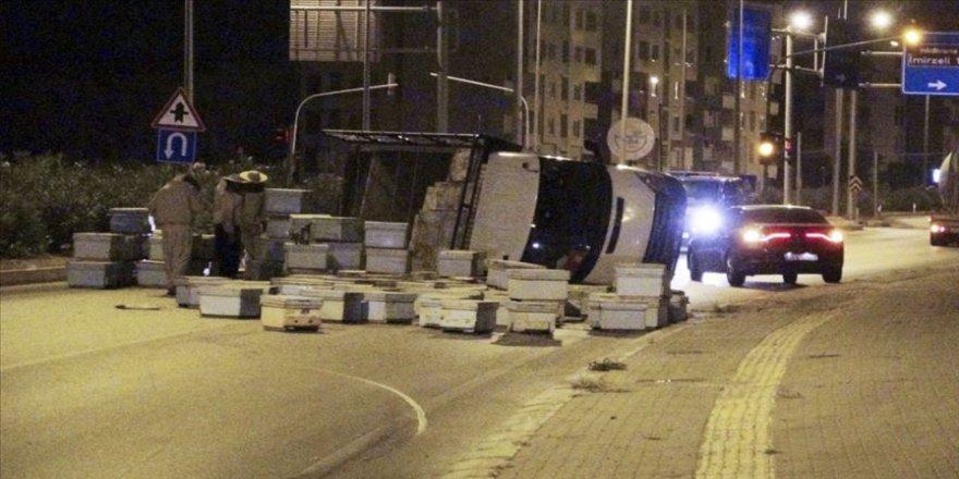 Mersin'de arı kovanı taşıyan kamyon kaza yapınca arılar etrafa saçıldı