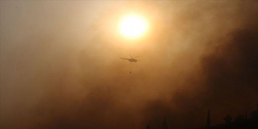 Aydın'ın Söke ilçesindeki orman yangını kontrol altına alındı
