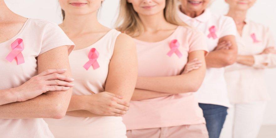 Meme kanseri için risk grupları 10 başlık altında toplanıyor