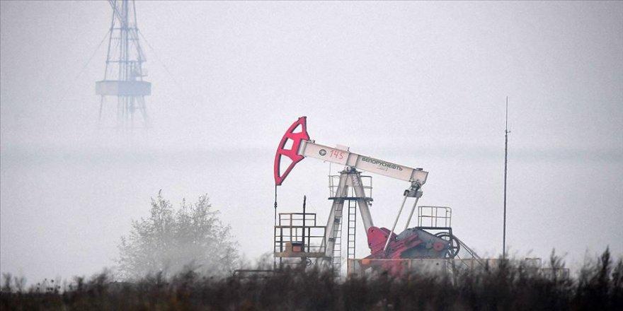 OPEC+ ülkelerinin hedefi petrolün varil fiyatını 40 doların üzerinde tutmak