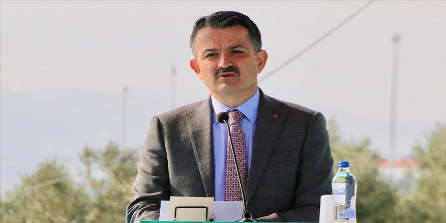 Bakan Pakdemirli:Toplam 414 milyon 754 bin lira çiğ süt destekleme ödemesini bugün yatırmaya başlayacağız