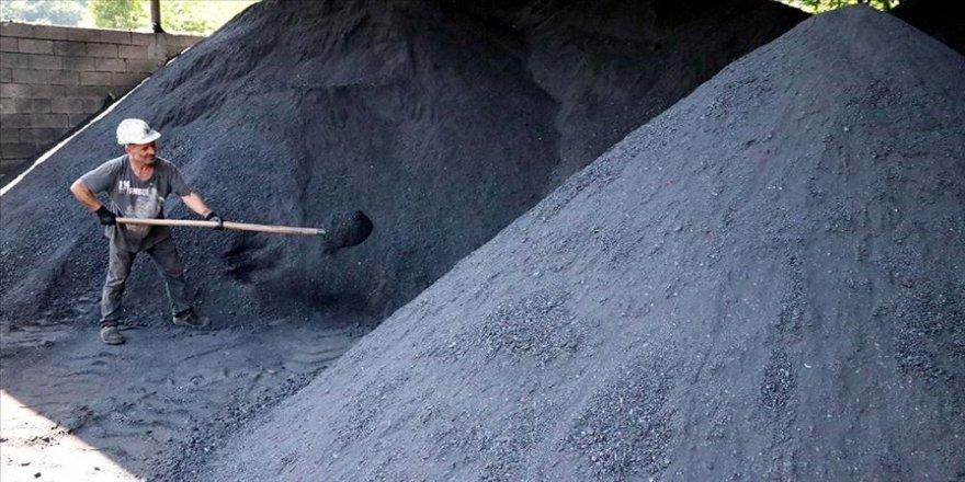 'Kara elmas'ı gün yüzüne çıkaran firmalar, Kovid-19 sürecinde de kazandırdı