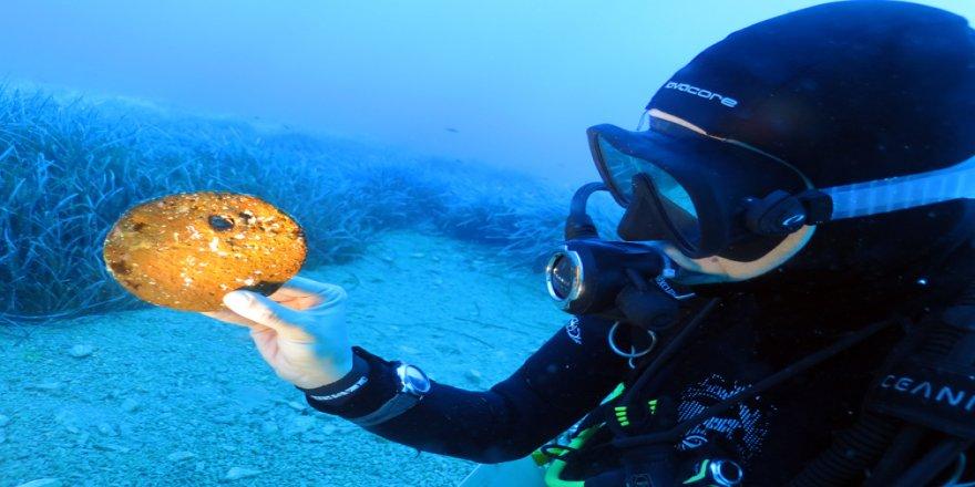 Türk araştırmacılar Tunç Çağı'ndan kalma 'su altı hazinesi'ni keşfetti