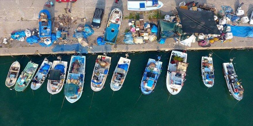 Batı Karadenizli balıkçılar hamsiden umutlu