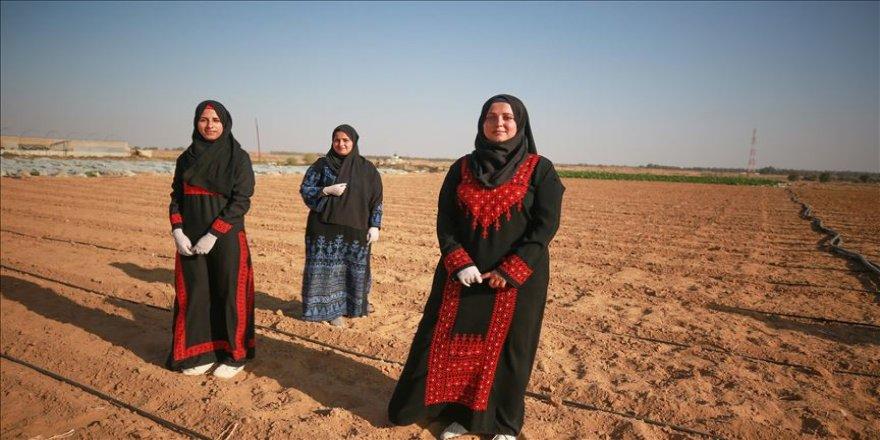 Gazze'de üniversite mezunu işsiz kadınlar, tarıma yöneldi