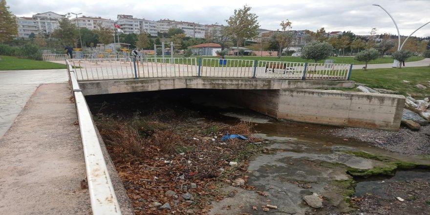 Kocaeli'de sahilde erkek cesedi bulundu