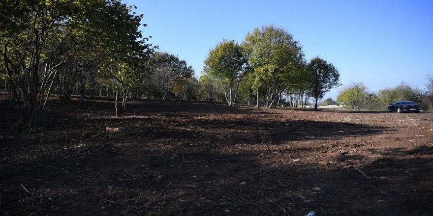 Güzelbahçe Mesire Alanı'nda yapılan çalışmalar devam ediyor