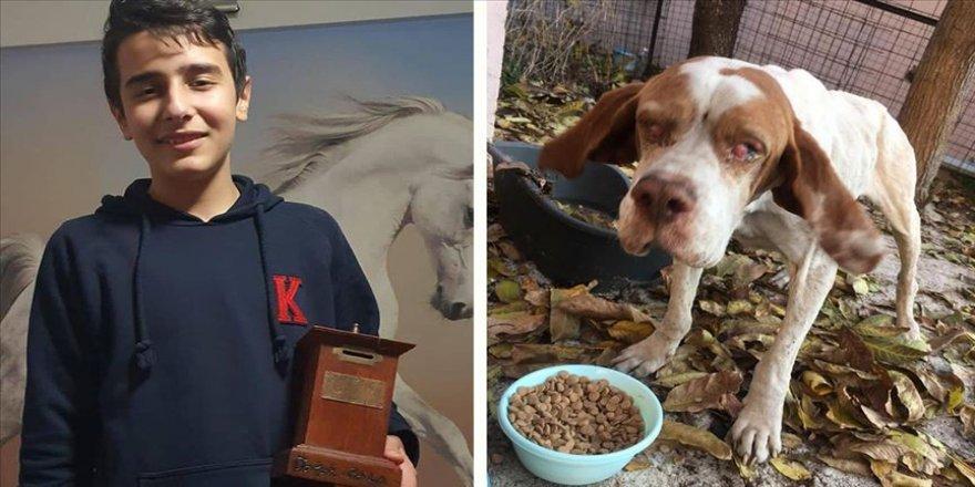 Gözleri görmeyen sokak köpeği 'Cangöz'ün tedavisi için kumbarasındaki paraları bağışladı