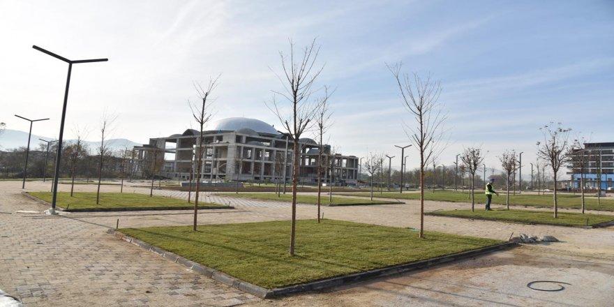 Kent Meydanı'nda çim serimine başlanıldı