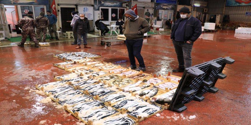 Ereğli Balık Hali'nde en sakin mezat