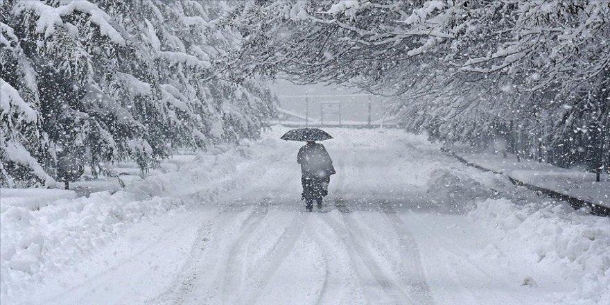 Japonya'da yoğun kar yağışı nedeniyle ölü sayısı 29'a çıktı