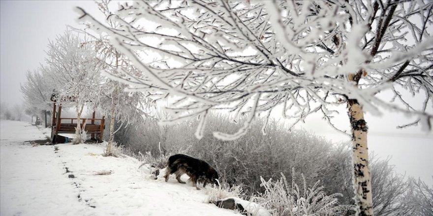 Doğu Anadolu'da gece en düşük sıcaklık Kars ve Ağrı'da ölçüldü