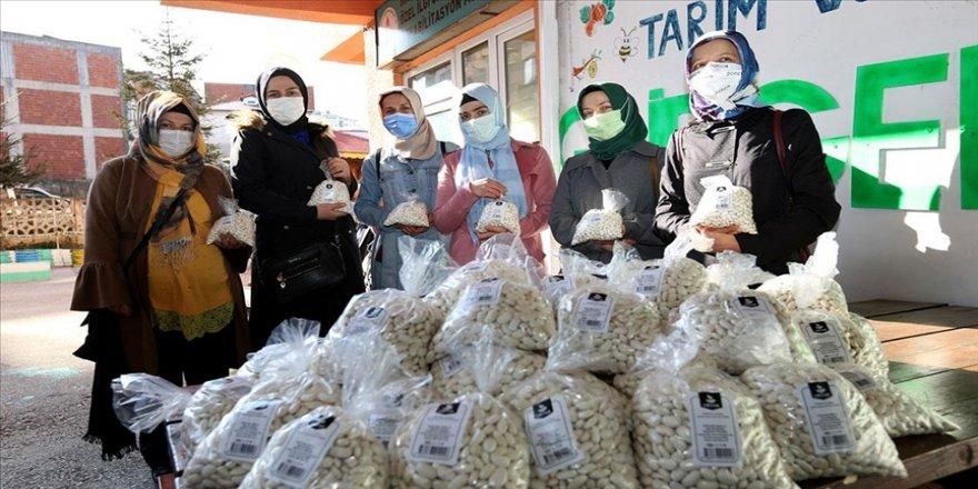 Ordu'da kadın çiftçilerin yetiştirdiği 8 ton çoban fasulyesini ORTAR satın aldı