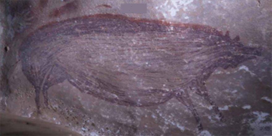 Mağaraya çizilmiş en eski hayvan resmi Endonezya'da bulundu