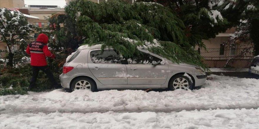 Zonguldak'ta yoğun kar yağışından devrilen ağaçlar 20 otomobile zarar verdi