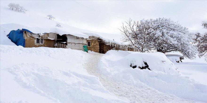 Muş'un yüksek kesimlerindeki tek katlı evler kara gömüldü