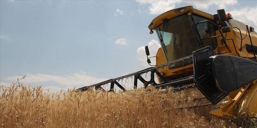 TMO yeni sezona kadar ekmeklik buğday stokunun yeterli olduğunu açıkladı