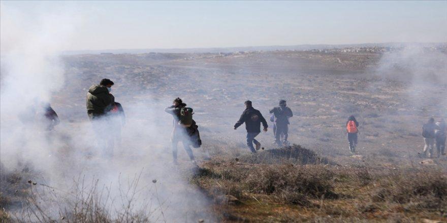 İsrailli Yahudi yerleşimciler, Filistinli göstericilere köpeklerle saldırdı