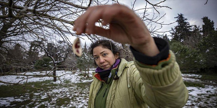 Kadın girişimci doğadan topladıklarını 'sıfır atık' prensibiyle takıya dönüştürüyor