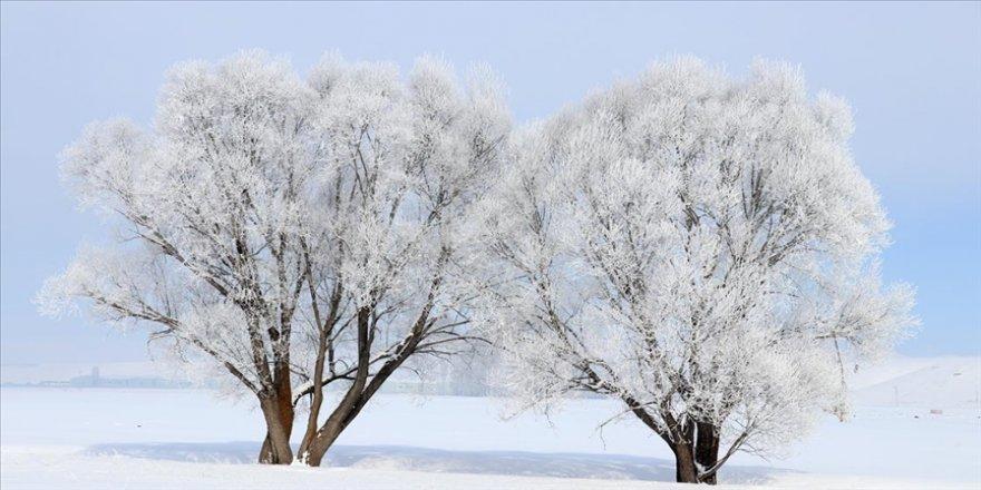 Doğu Anadolu'da en düşük sıcaklık sıfırın altında 18 dereceyle Ağrı'da ölçüldü