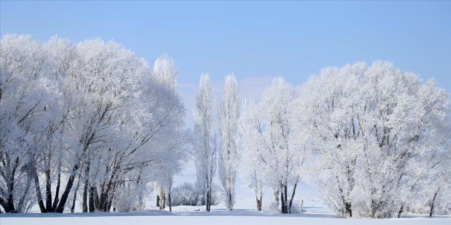 Ağrı'da dondurucu soğuklar martta da etkisini sürdürüyor