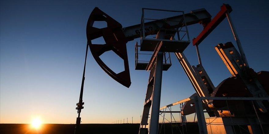 OPEC üretim kesintisine devam ederse bu karar petrol fiyatlarını olumlu etkileyecek