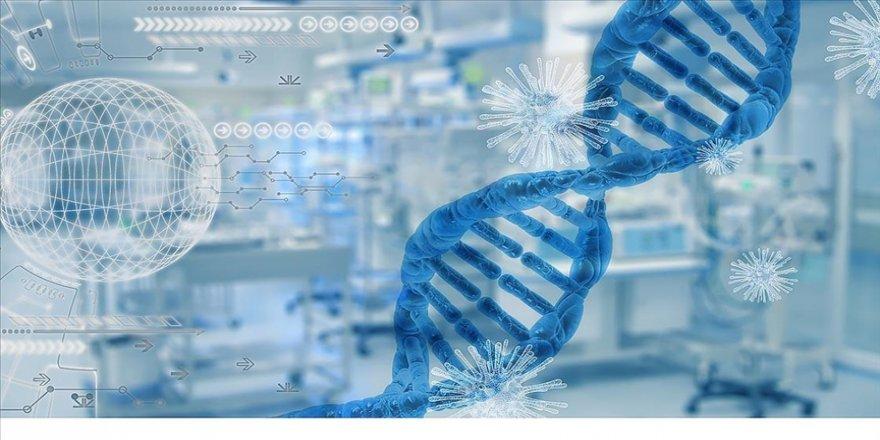 Araştırmaya göre Kovid-19'a karşı geliştirilen bağışıklık hücreleri varyantlarına karşı da etkili oluyor