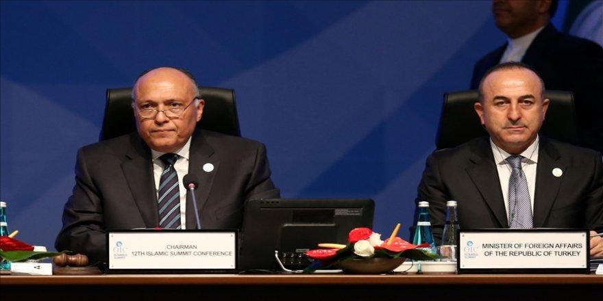 Dışişleri Bakanı Çavuşoğlu, Mısırlı mevkidaşı Şukri ile görüştü