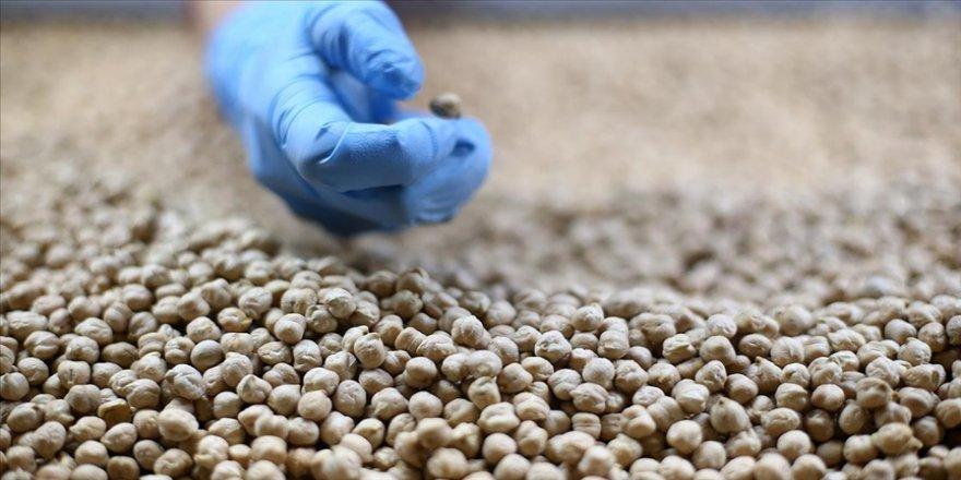 Türkiye'nin son 3 yıldaki bakliyat ihracatı 1 milyar dolara yaklaştı
