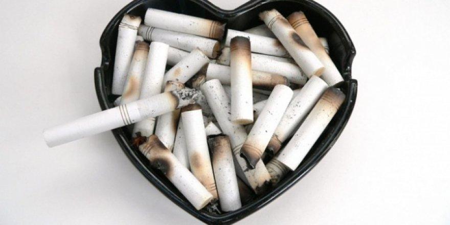 Sigara Birçok Kanserin Sebebi