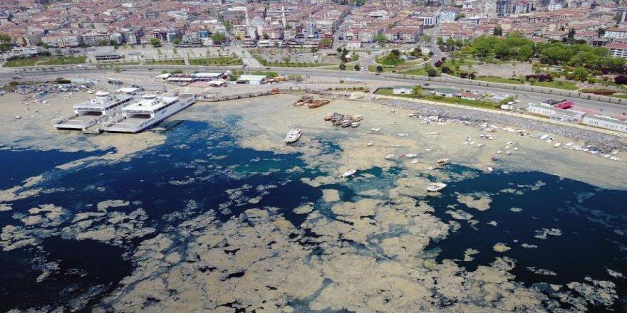 Sermayenin denizi kendi çöplüğü olarak kullanmasının sonucunu yaşıyoruz