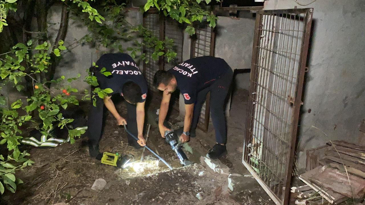 Darıca'da yağmur giderine düşen yavru kediyi itfaiye ekipleri kurtardı