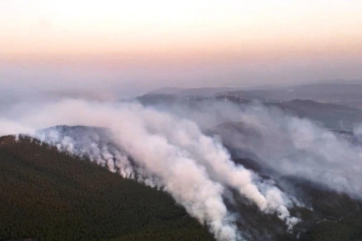 Muğla'da yangın söndürme çalışmaları 4. gününde devam ediyor