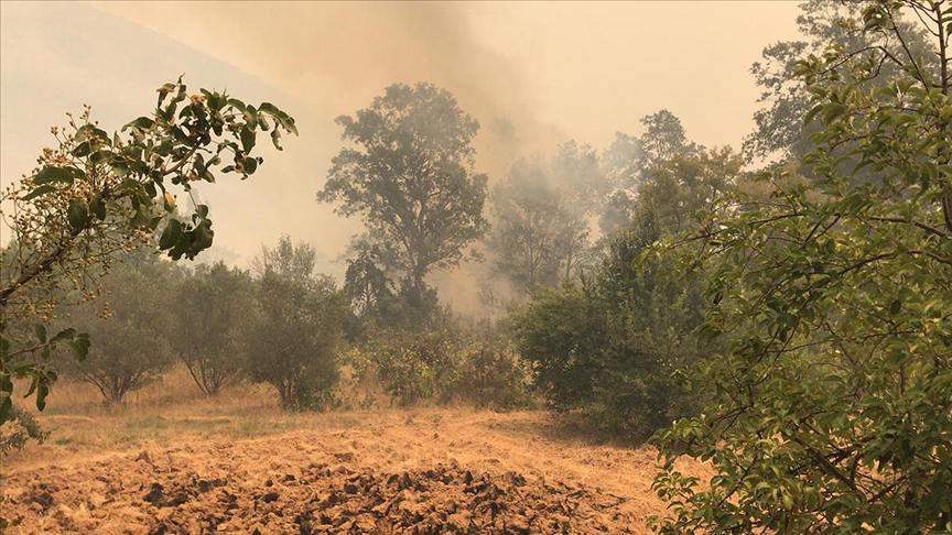Gündoğmuş ve Alanya'daki orman yangınları kontrol altına alınmaya çalışılıyor