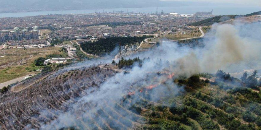 Kocaeli'de orman yangınlarını önlemek için bir yasak daha geldi