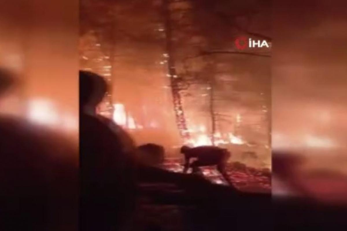 Yangın bölgesinde itfaiyecilerin ve vatandaşların ölüm kalım savaşı