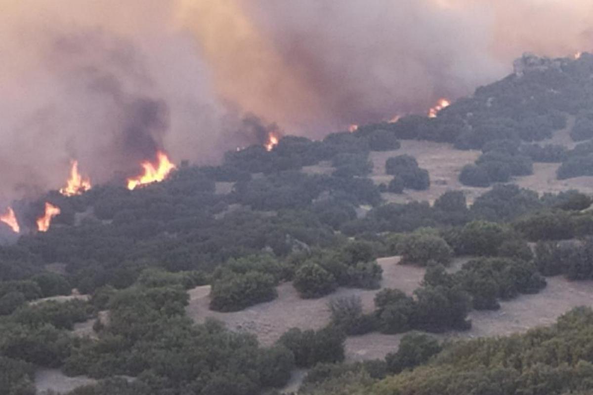 Manisa Büyükşehir Belediyesi ve MASKİ, Denizli'deki orman yangınına müdahalede bulundu