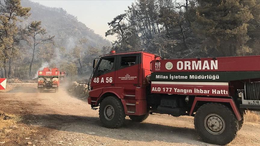 Milas, Bodrum ve Kavaklıdere'deki orman yangınlarına havadan ve karadan müdahale sürüyor