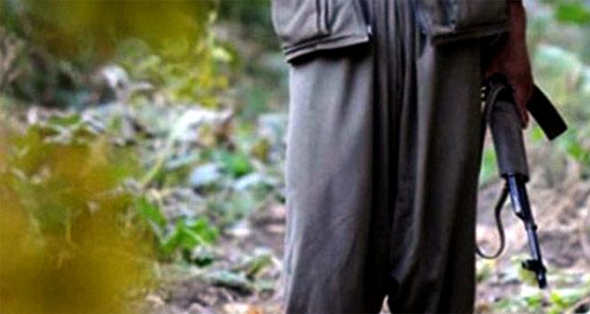 Siirt-Pervari kırsalında 2 terörist etkisiz hale getirildi