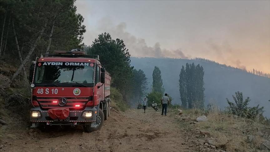 Aydın'daki orman yangını nedeniyle bir mahalle kısmen tahliye edildi