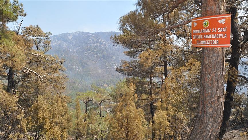Muğla'da ormanlık alanlara görevliler dışındakilerin girmesi yasaklandı