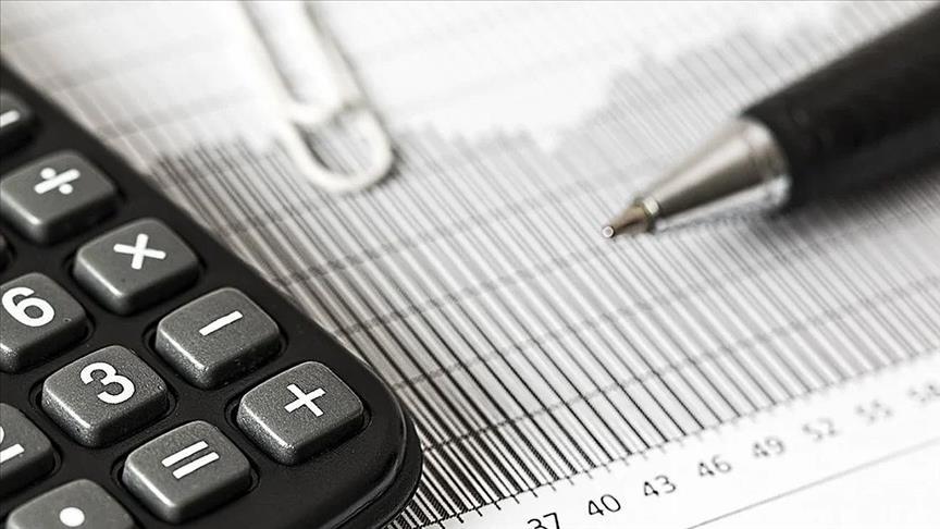 Ekonomistler, OVP'deki büyüme ve enflasyon öngörülerini değerlendirdi