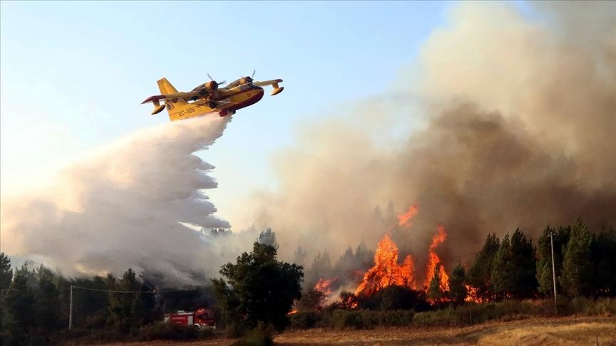İspanya'nın güney bölgesindeki yangınlar devam ediyor