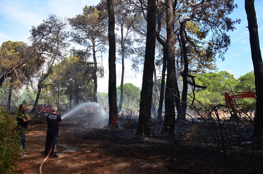 Manavgat'ta çıkan orman yangını havadan ve karadan müdahaleyle kontrol altına alındı