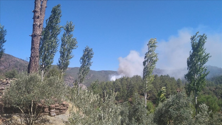 Muğla'da çıkan orman yangınına müdahale ediliyor