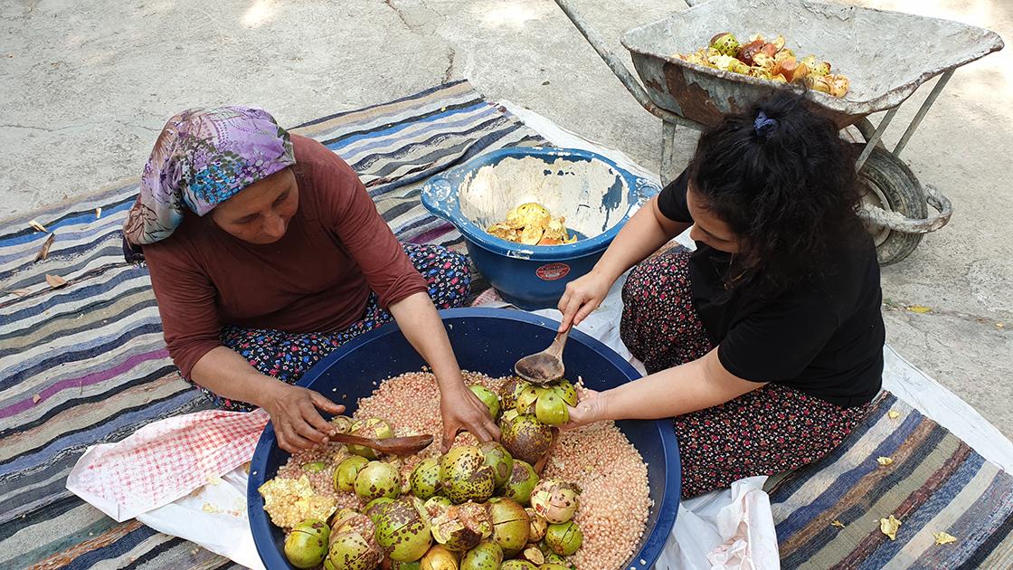 Çukurovalı kadınların geleneksel nar ekşisi mesaisi